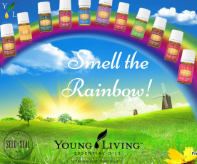 Everyday oils-smell rainbow