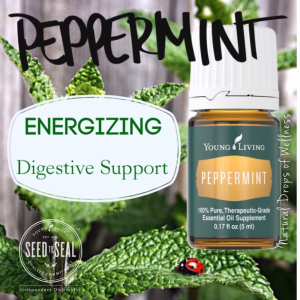Peppermint-digest