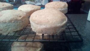 baked hamburger buns