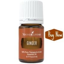 ginger-buy-now