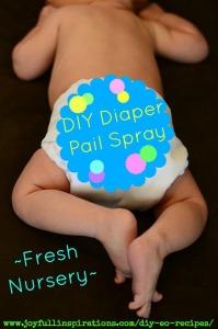 diy-diaper-pail-spray