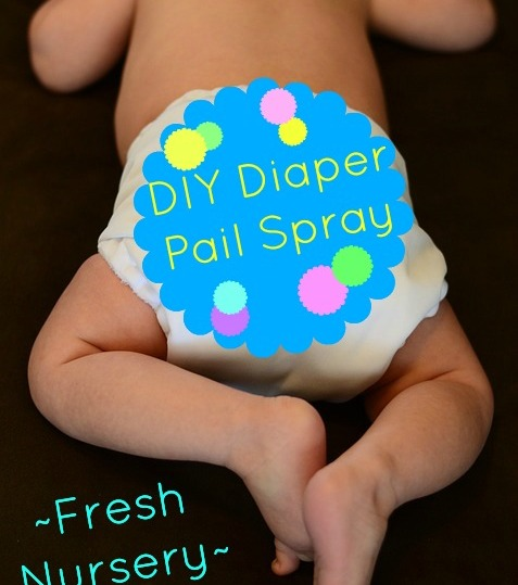 diy-diaper-pail-spray