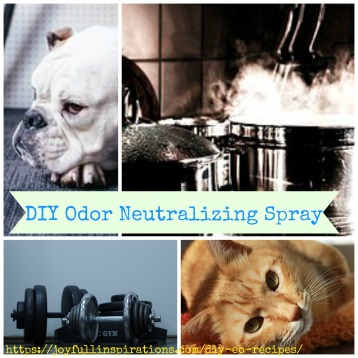 diy-odor-neutralizing-spray
